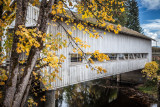 Crawfordsville (Calapooia River) Covered Bridge