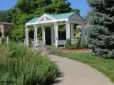 Hamann Rose Garden