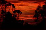 draught sunrise.jpg