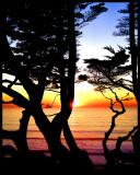 Sunset a Buena Vista 009.jpg