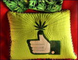 Pot pillow for Dennis with matching cases..jpg