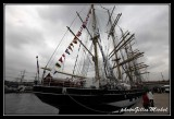 Armada2013-006.jpg