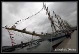 Armada2013-011.jpg