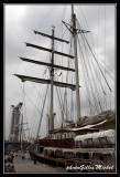 Armada2013-040.jpg