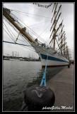 Armada2013-064.jpg