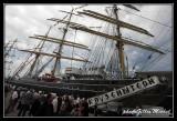 Armada2013-088.jpg