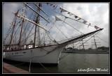 Armada2013-096.jpg