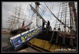 Armada2013-101.jpg