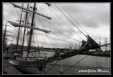 Armada2013-214.jpg