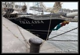 Armada2013-218.jpg