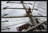 Armada2013-255.jpg