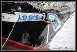 Armada2013-344.jpg
