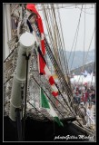 Armada2013-376.jpg