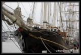 Armada2013-401.jpg