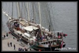 Armada2013-432.jpg