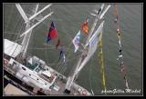 Armada2013-440.jpg