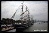 Armada2013-559.jpg