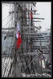 Armada2013-573.jpg