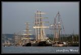 Armada2013-653.jpg