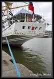 Armada2013-801.jpg