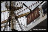 Armada2013-805.jpg