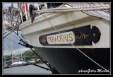 Armada2013-833.jpg