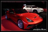 Concept-Cars Exhibition PARIS 2014
