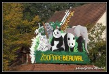 Zoological Gardens of Beauval