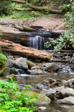 101 Trails