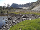 Pond and Bog at 9500'