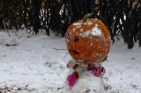 A Pocatello Pumpkinhead