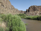 Salmon Falls Creek