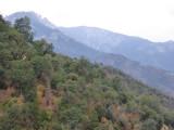 California's Sierra Foothills