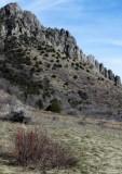 A Ridgetop of Rocks