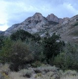Evening in Lamoille Canyon