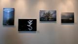 Jans Gallery - 3.jpg