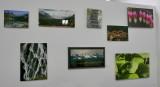 Jans Gallery - 5.jpg