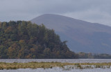 Inchcailloch and Beinn Dubh, Loch Lomond NNR