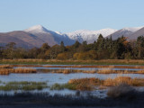 Wards Pond and the Glen Luss hills