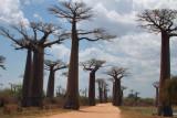 Madagascar - Views