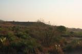 Roadside view between Toliar and Zombitse