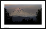 Afterglow,  Mount  Hood