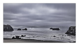 Overcast morning,   Bandon