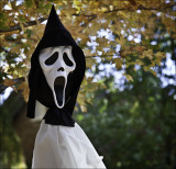 Munch' s  Scream