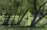 Andover Lake