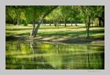 A Green World