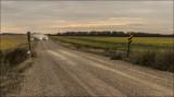 Dry  Road