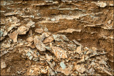 Gypsum Outcrop