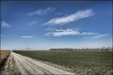 Limestone Road