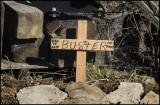Buster's Memorial
